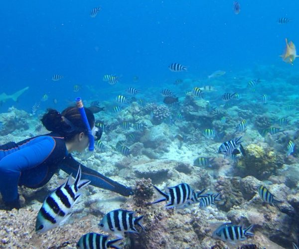 Apnée-Seychelles
