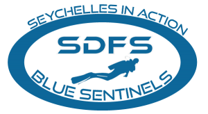 Resultado de imagen de sdfs